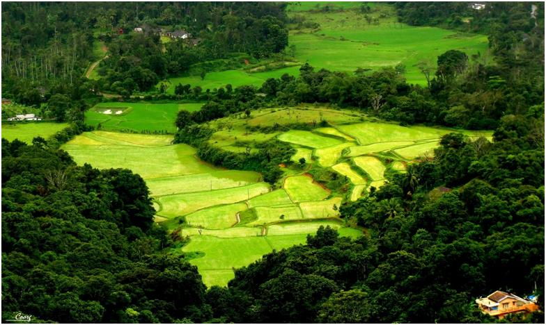 coorg best honemoon places in India in Karnatka