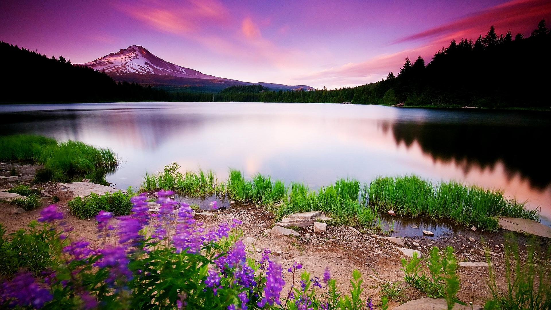 Mountain Nature HD Wallpaper For Wide Background