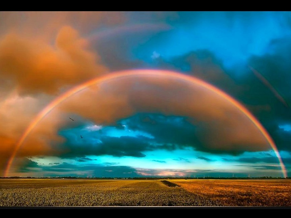 Rainbow HD Wallpaper For Mobile