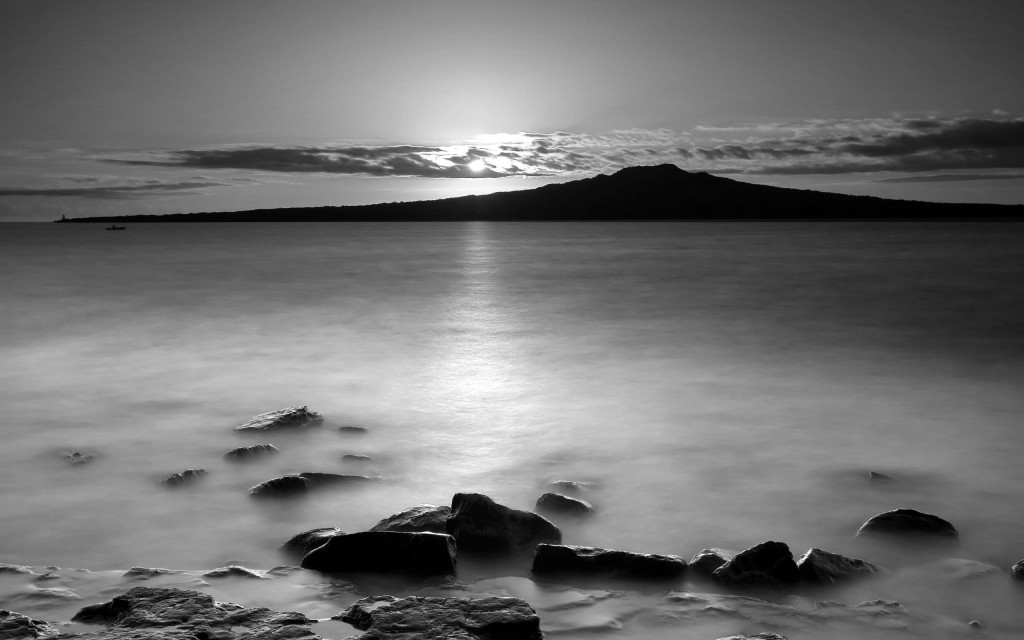 Black And White Nature HD Wallpaper For Iphone