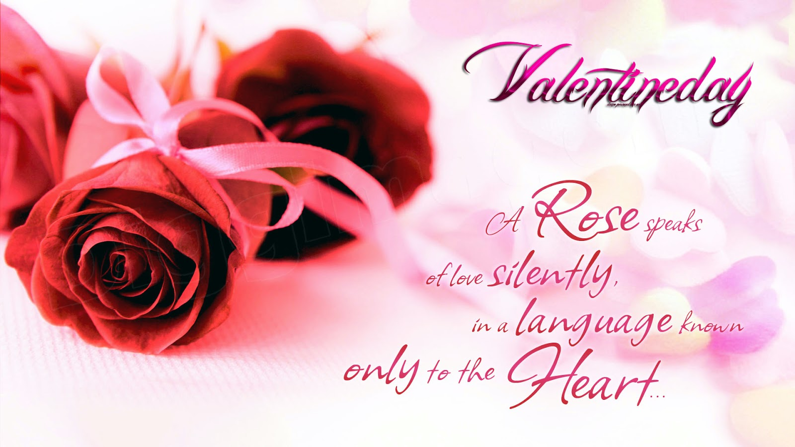 Happy Rose Day Wishes Wallpapers Greetings Messages Quotes ...