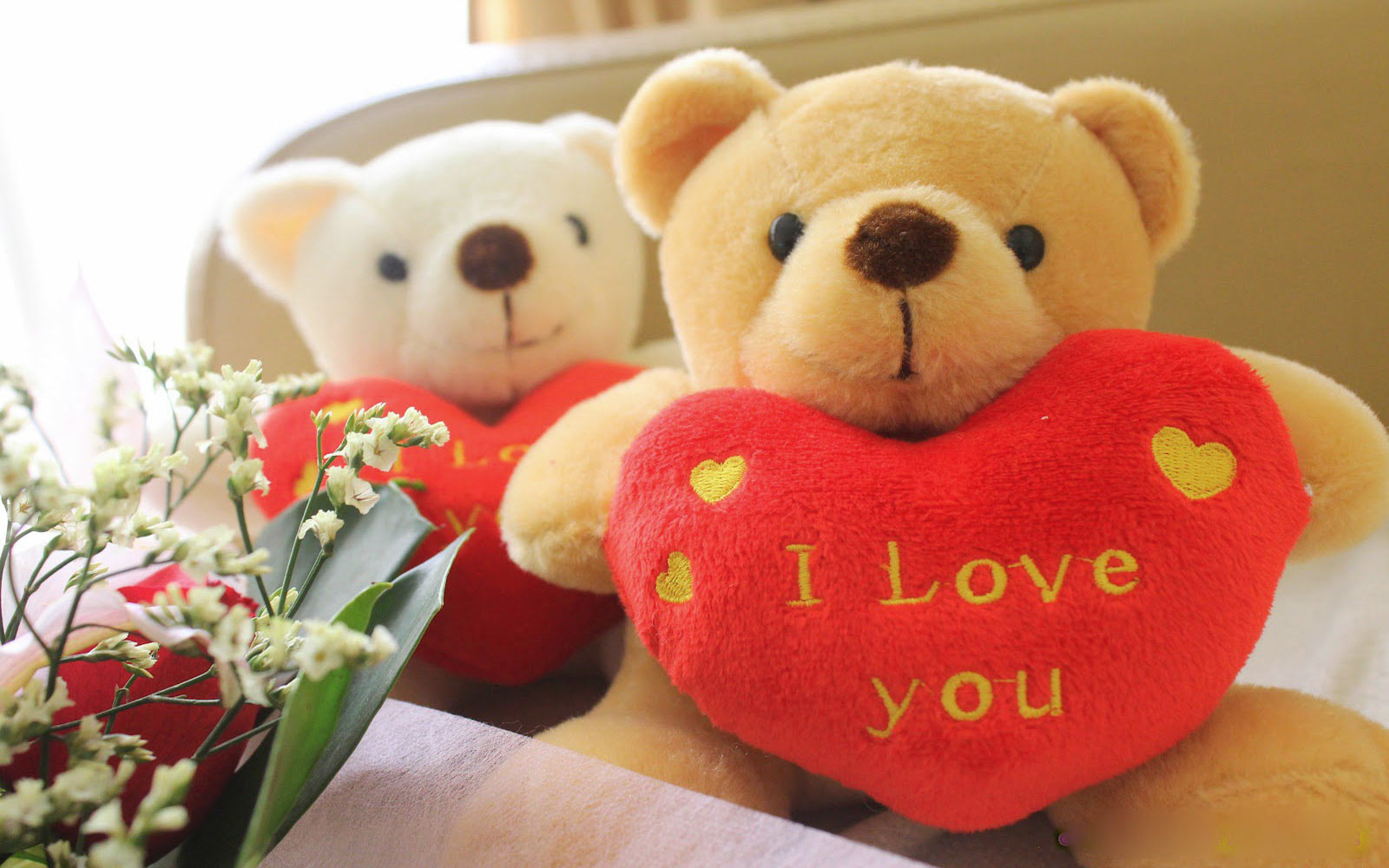 happy teddy bear day whats app dp for boys