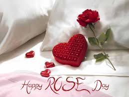 rose day images for wide screen