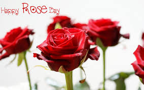 rose day images for windows