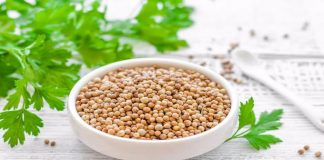 coriander seeds health benefits