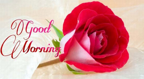 GOOD MORNING SMS