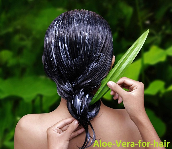 aloe vera for frizzy hairs
