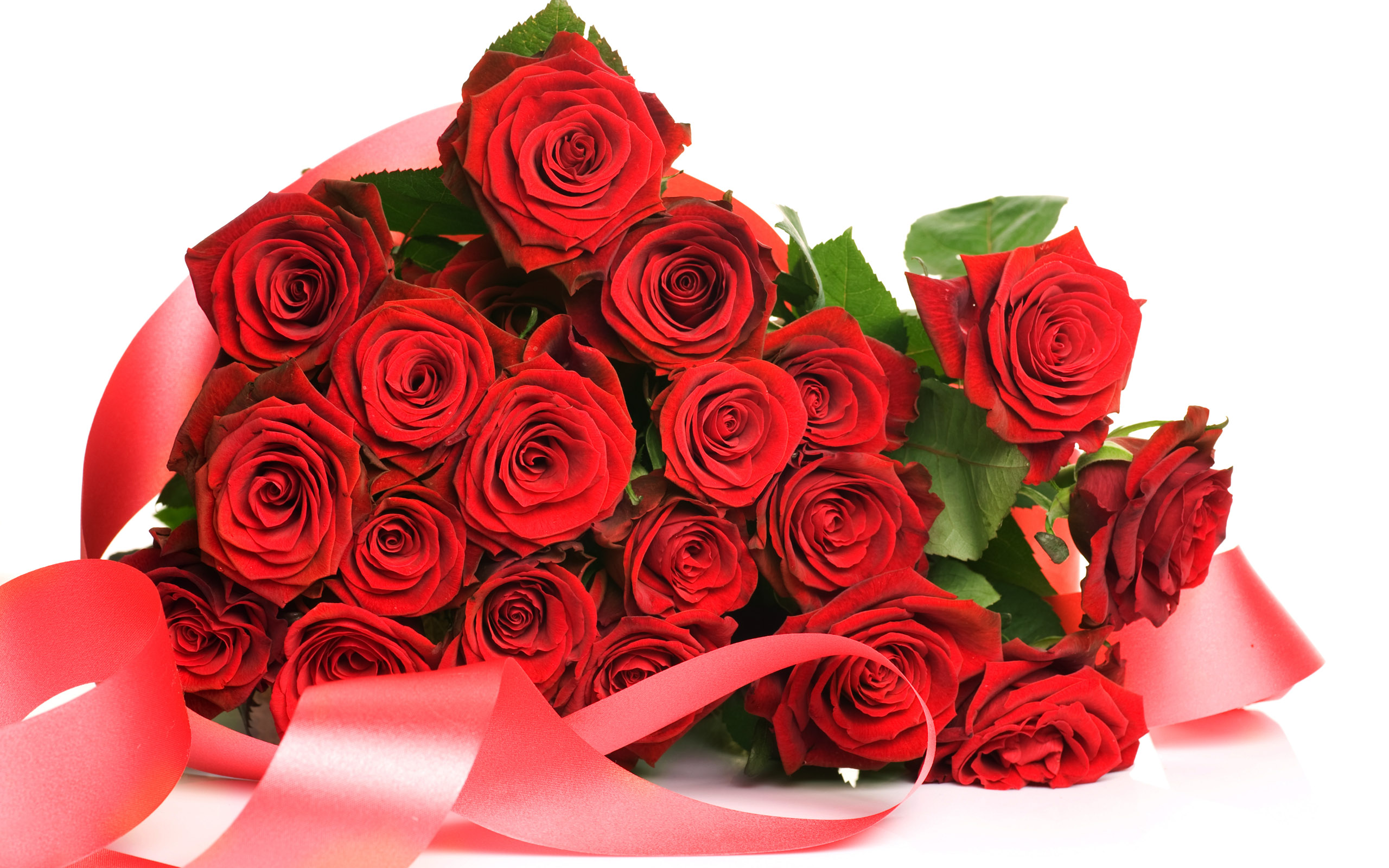Worlds top 100 beautiful flowers images wallpaper photos free happy rose day images izmirmasajfo