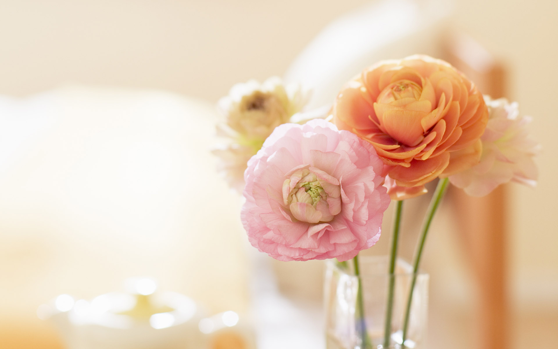 flowers wallpapers for windows 7