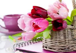 Latest collection of flowers images