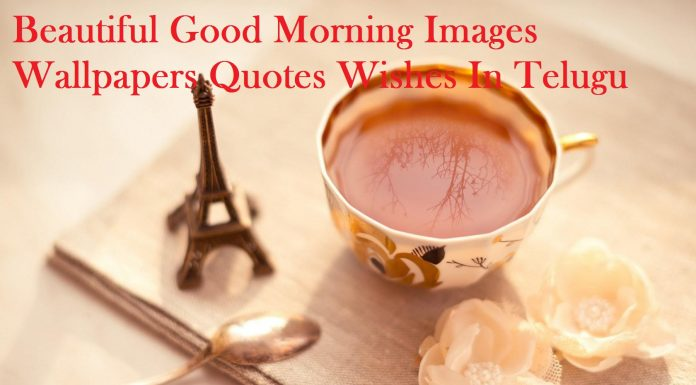 good morning images hd wallpapers