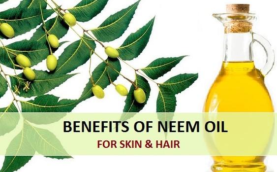 benefits of neem oil