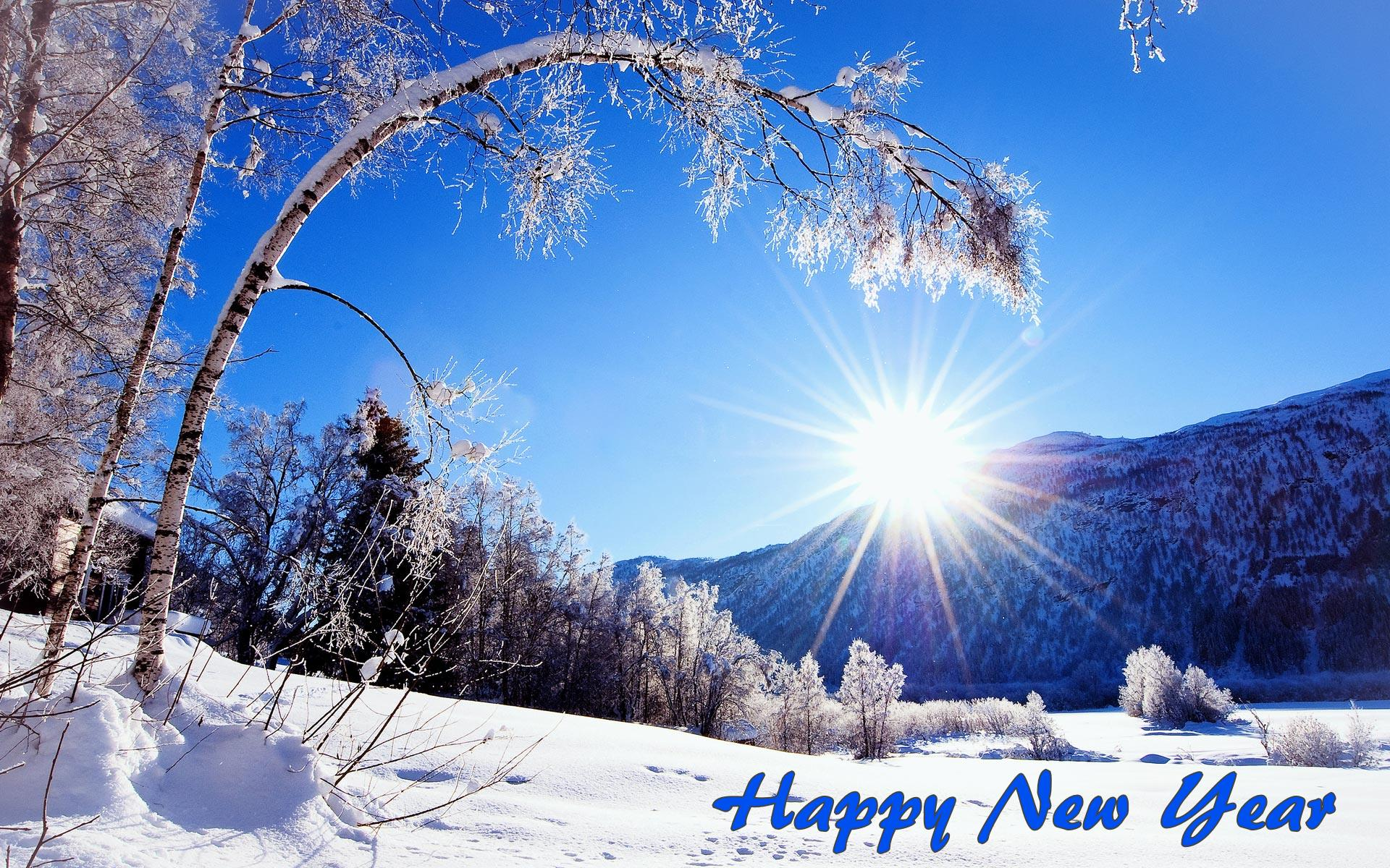 happy new year winter images